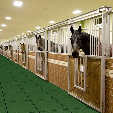 Best Specialized Horse Stable Rubber Flooring